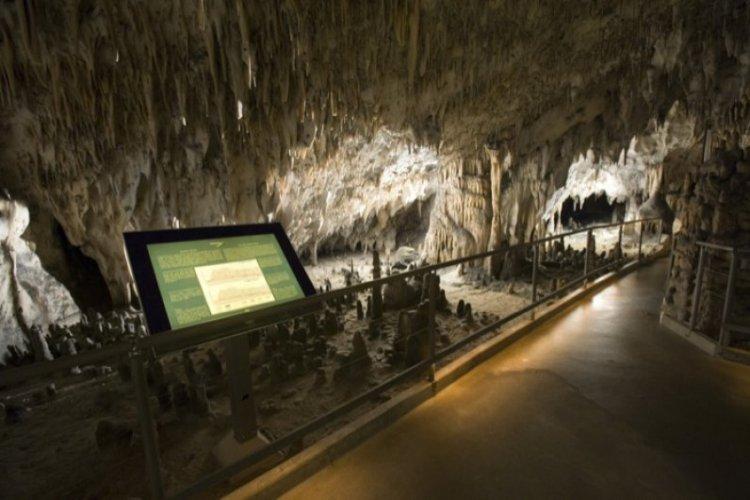 Jaskinia Postojna - zwiedzanie